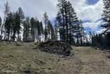 NNA Osprey Circle - Photo 6