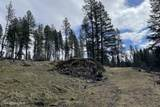 NNA Osprey Circle - Photo 7