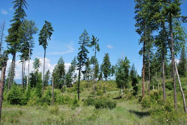 Lot 33 Wood Duck Ln, Bonners Ferry, ID 83805 (#16-4761) :: Prime Real Estate Group
