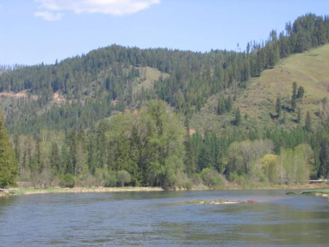 18985 St Joe River Rd, St. Maries, ID 83861 (#17-10528) :: Prime Real Estate Group