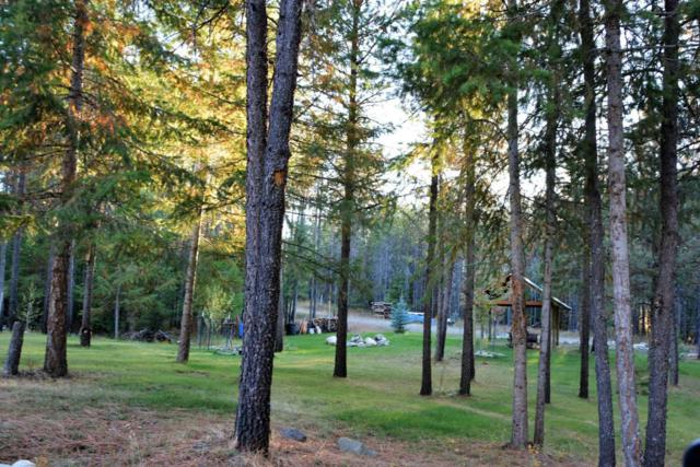 Tr 250 Newman Drive, Spirit Lake, ID 83869 (#17-10655) :: Chad Salsbury Group