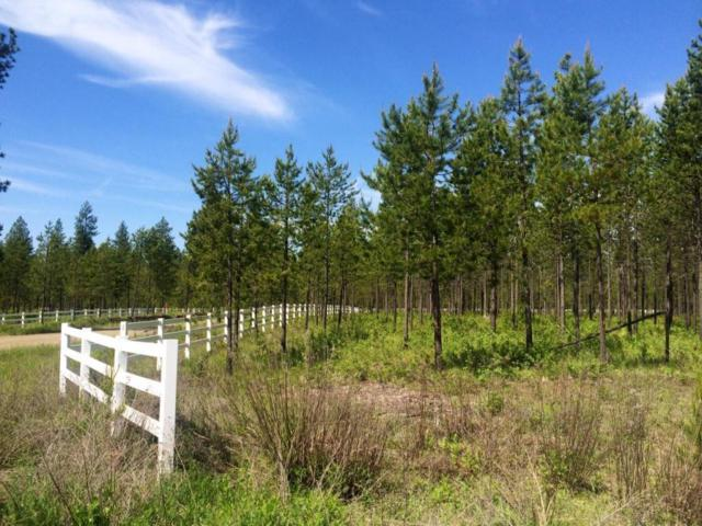 Block 1 Lot 8 Elsa Court, Blanchard, ID 83804 (#17-10916) :: Prime Real Estate Group