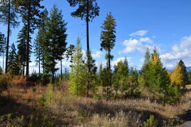 Lot 4 Pintail Dr, Bonners Ferry, ID 83805 (#17-10982) :: Prime Real Estate Group