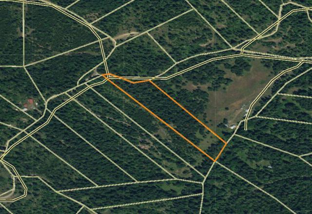 1709 W. Tamarack Drive, Fernwood, ID 83830 (#17-11438) :: Prime Real Estate Group