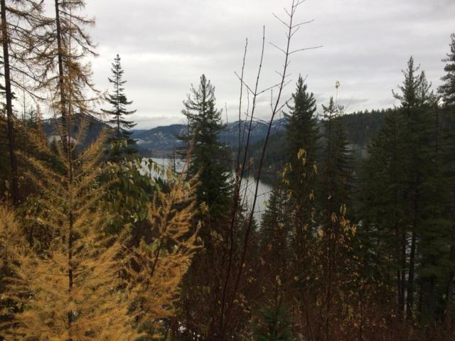 NKA S Junco Rd, St. Maries, ID 83861 (#17-11500) :: Prime Real Estate Group