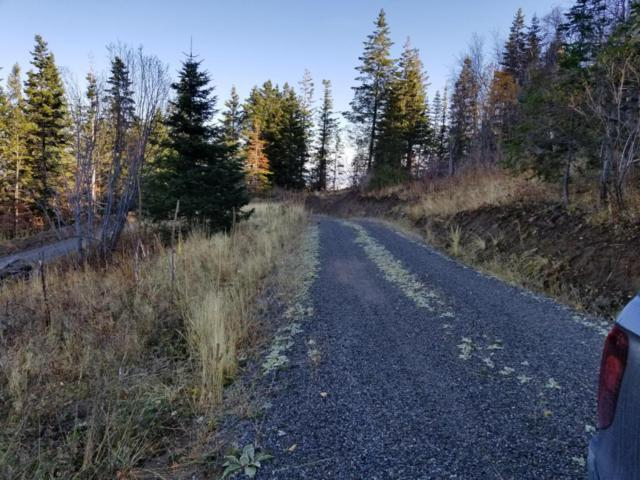 NKA Blossom Mountain, Post Falls, ID 83854 (#17-11622) :: Prime Real Estate Group