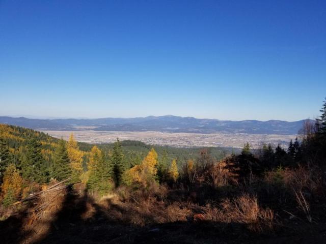 NKA Blossom Mountain, Post Falls, ID 83854 (#17-11627) :: Prime Real Estate Group