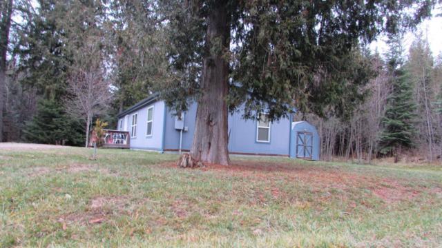 135 Cedar Hill, Sagle, ID 83860 (#17-11905) :: Prime Real Estate Group