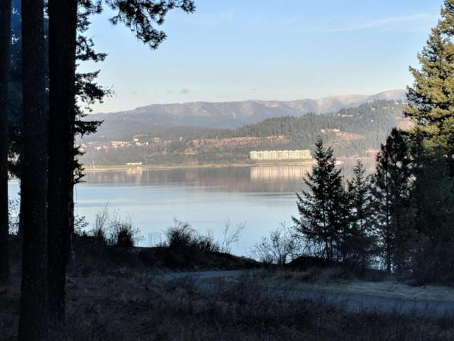 W Harbor View Dr., Coeur d'Alene, ID 83814 (#17-12046) :: Link Properties Group