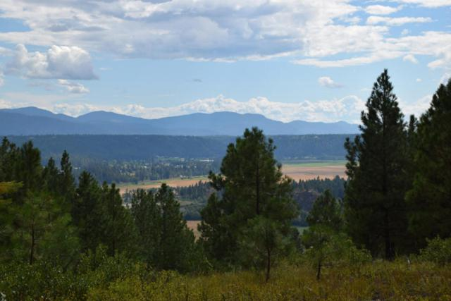 NNA Chokecherry, Bonners Ferry, ID 83805 (#17-6366) :: Prime Real Estate Group