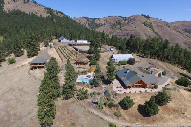 209 Big Canyon Rd, Whitebird, ID 83554 (#17-6548) :: Prime Real Estate Group