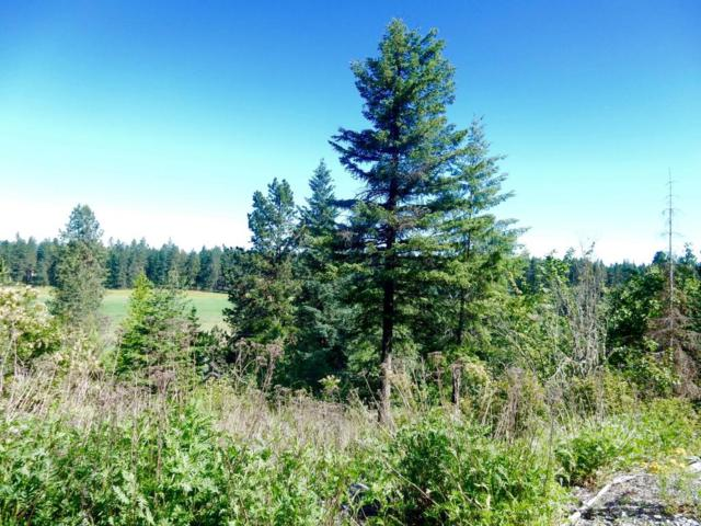 L2 E Upper Hayden Lake Rd, Hayden, ID 83835 (#17-6686) :: Prime Real Estate Group