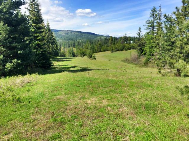 Lot 2 Loffs Bay, Coeur d'Alene, ID 83814 (#17-6924) :: Prime Real Estate Group