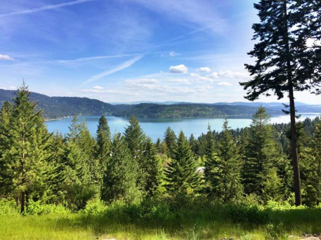 Lot 1 Loffs Bay, Coeur d'Alene, ID 83814 (#17-6927) :: Prime Real Estate Group
