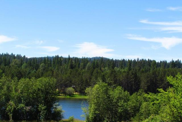 Lot 27 Comeback Bay Ln, Sagle, ID 83860 (#17-7377) :: Prime Real Estate Group