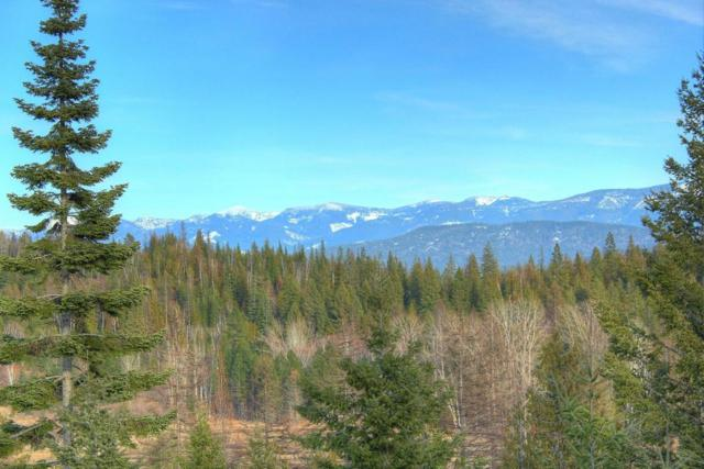 NNA Hidden Valley, Sandpoint, ID 83864 (#17-7997) :: Prime Real Estate Group