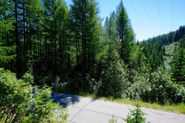 NNA Telemark Rd Blk 8 Lot 2, Sandpoint, ID 83864 (#17-8162) :: Prime Real Estate Group