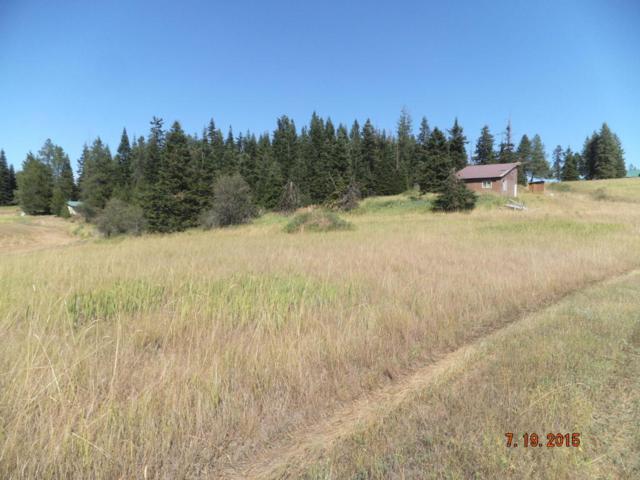 130 Mountain Pasture Drive, St. Maries, ID 83861 (#17-8408) :: The Spokane Home Guy Group
