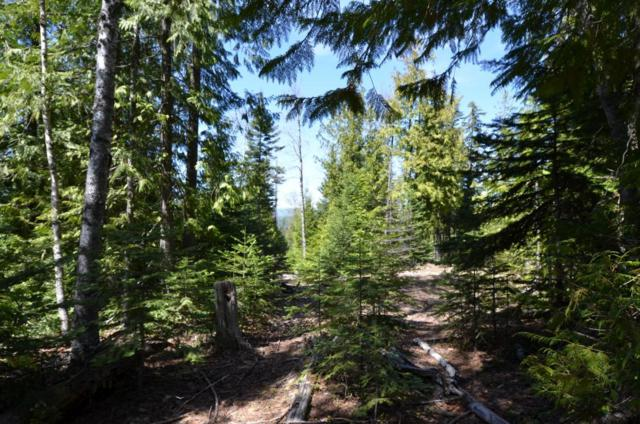 Lot 6 Rising Hawk Ridge, Sandpoint, ID 83864 (#17-8722) :: Prime Real Estate Group
