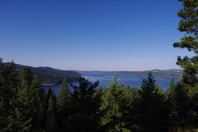 NNA S Ridge View Loop, Harrison, ID 83833 (#17-9202) :: The Spokane Home Guy Group