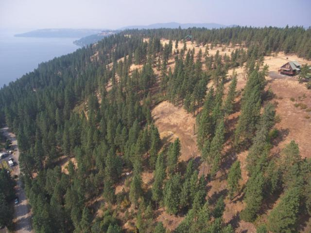 NNA Crows Nest Rd Lot 9 And 10, Harrison, ID 83833 (#17-9706) :: Prime Real Estate Group