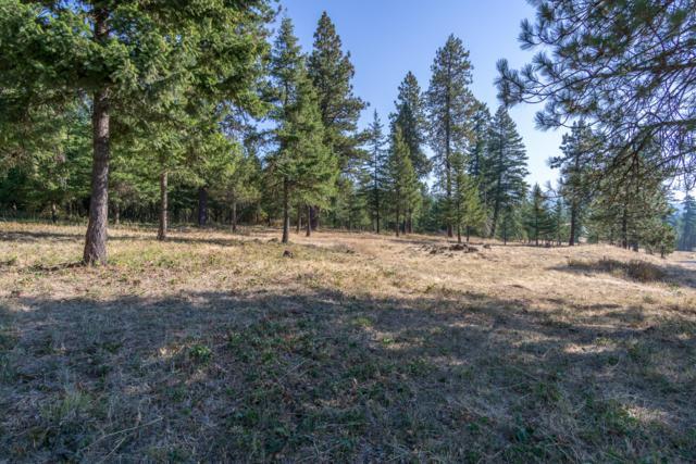 Nna Ridgeview Loop, Harrison, ID 83833 (#18-10356) :: The Spokane Home Guy Group