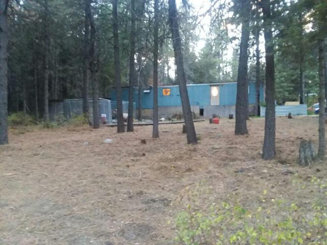 924 Torrens Trl, Spirit Lake, ID 83869 (#18-10556) :: Link Properties Group
