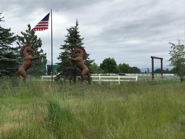 6132 W Quaking Aspen Dr, Coeur d'Alene, ID 83814 (#18-1077) :: The Spokane Home Guy Group