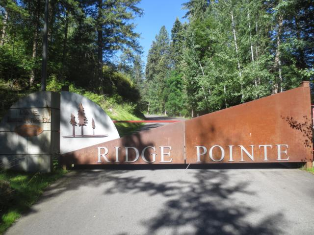 1700 E Tower Pointe Dr #204, Coeur d'Alene, ID 83814 (#18-11027) :: Prime Real Estate Group