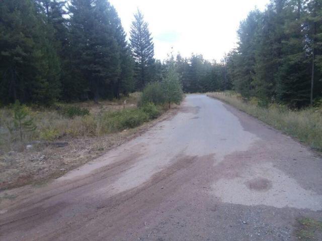 924 Torrens Trl, Spirit Lake, ID 83869 (#18-11030) :: Team Brown Realty