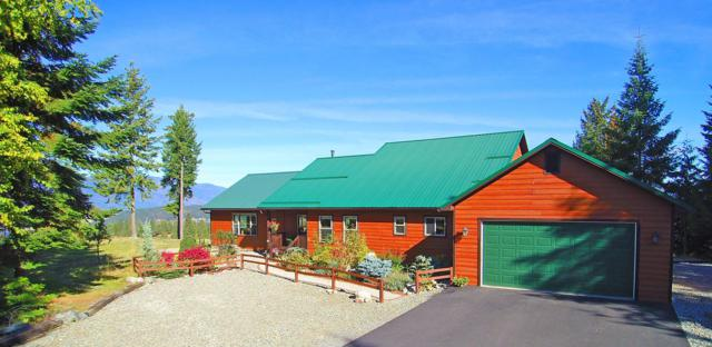 125 Cottage Lane, Bonners Ferry, ID 83805 (#18-11257) :: Team Brown Realty
