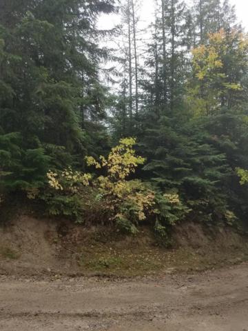 2723 Crystal Peak Rd, Fernwood, ID 83830 (#18-11266) :: Team Brown Realty