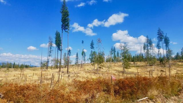 Tract 7 Hidden River Vistas, St. Maries, ID 83861 (#18-11515) :: The Stan Groves Real Estate Group