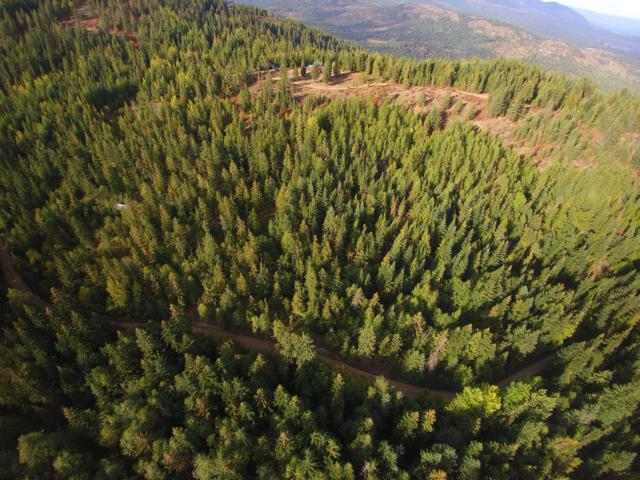 NKA Upper Manley Creek 20 Acre Rd., Laclede, ID 83841 (#18-11597) :: Team Brown Realty