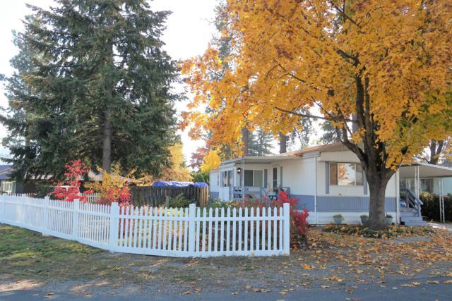 9190 N Starr Loop, Hayden, ID 83835 (#18-11815) :: Northwest Professional Real Estate