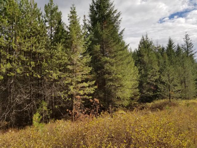 TBD Torrens Trail, Spirit Lake, ID 83869 (#18-11840) :: Link Properties Group