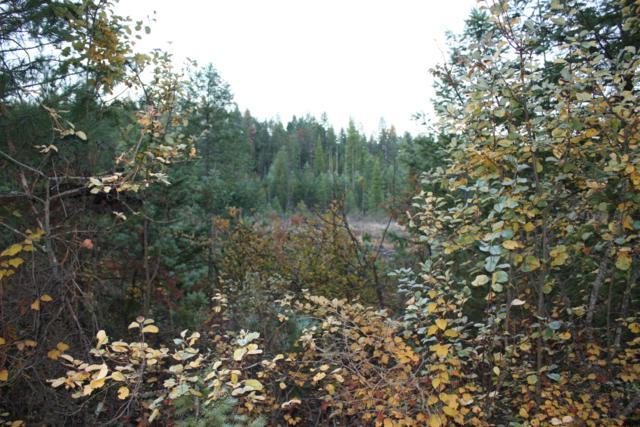 0 Mara Meadows, Athol, ID 83801 (#18-11849) :: Link Properties Group