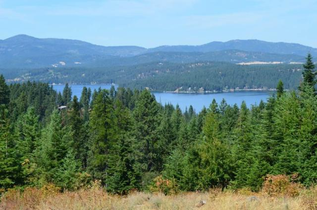 Lt 1 Blk 8 Lahaina Rd, Harrison, ID 83833 (#18-1186) :: Prime Real Estate Group