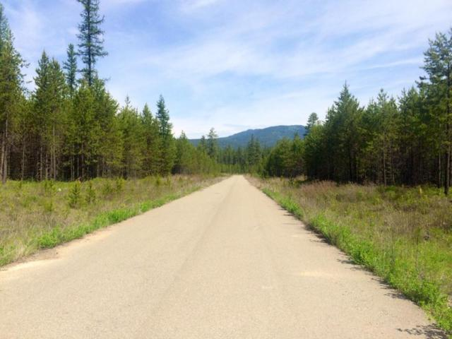Block 1 Lot 2  Elsa Court, Blanchard, ID 83804 (#18-1259) :: Prime Real Estate Group