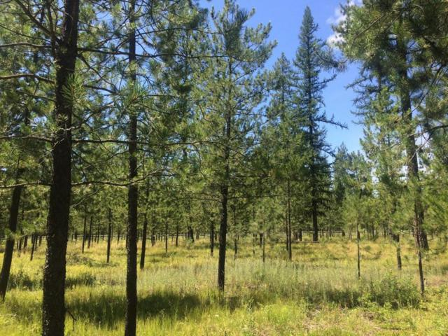 Block 2 Lot 1  Ali Court, Blanchard, ID 83804 (#18-1263) :: Prime Real Estate Group