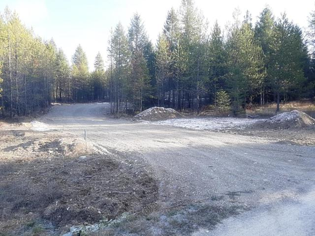NKA Bearing Tree Lane Lot A, Spirit Lake, ID 83869 (#18-12649) :: Prime Real Estate Group