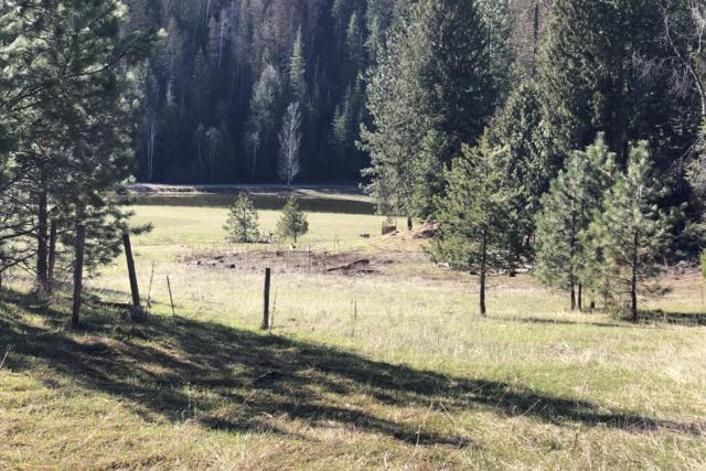NNA Parker Canyon Rd, Bonners Ferry, ID 83805 (#18-12782) :: Groves Realty Group