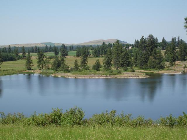 12000 Meadow Rd, Medical Lake, WA 99022 (#18-12844) :: Team Brown Realty