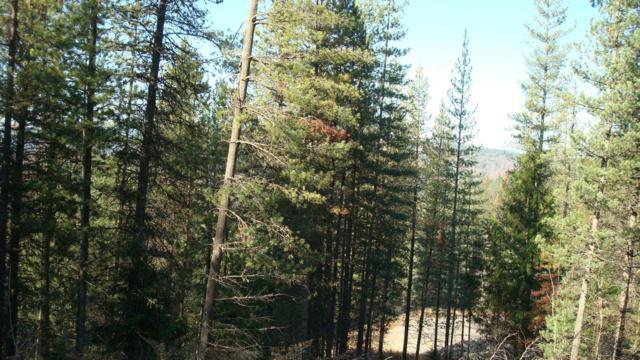 125 Trail Blazer, Pinehurst, ID 83850 (#18-2461) :: Link Properties Group