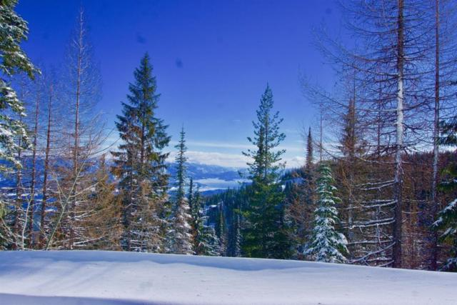 Lot 6 Tall Timber, Sandpoint, ID 83864 (#18-2529) :: Team Brown Realty