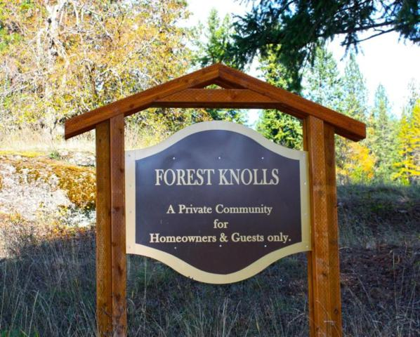 Nna Forest Knolls Lot 12, Sandpoint, ID 83864 (#18-2597) :: The Spokane Home Guy Group