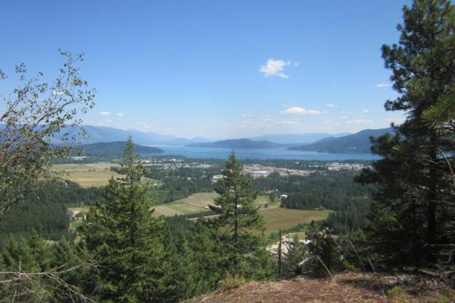 Lot 1G Summit, Sandpoint, ID 83864 (#18-3797) :: Link Properties Group