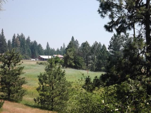 NKA French Gulch Road, Coeur d'Alene, ID 83814 (#18-3798) :: Prime Real Estate Group
