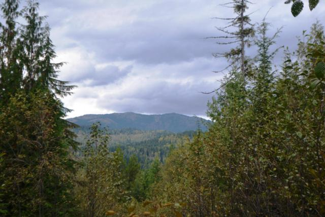 Lots 2 & 3 Rising Hawk Ridge Rd, Sandpoint, ID 83864 (#18-3832) :: The Stan Groves Real Estate Group