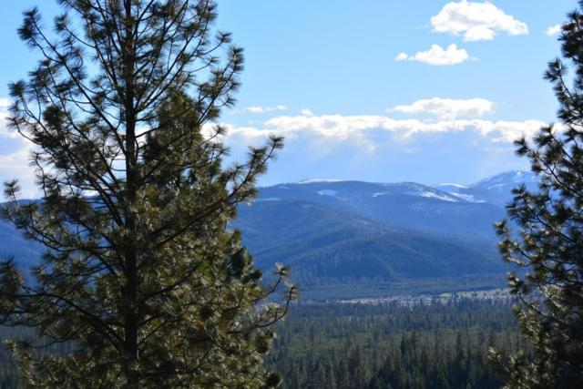 NKA Rogstad Powerline Road, Blanchard, ID 83804 (#18-3862) :: The Stan Groves Real Estate Group